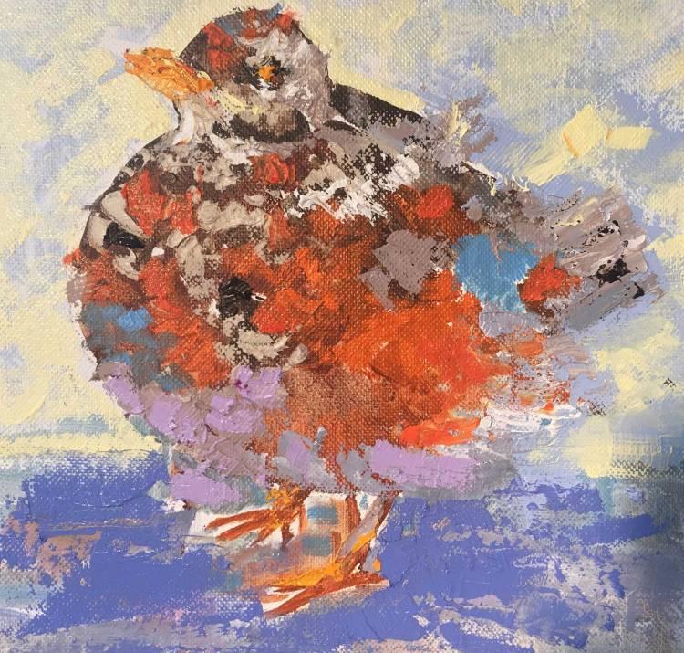 Baby-Bird-2